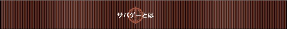 サバゲーとは|福島県白河市のサバイバルゲームフィールド「Battle Flag」 初心者・女性からマニアまで楽しめるフィールドとなっています! レンタル品のご用意もあり、手ぶらでご利用できます!-サバイバルゲームフィールド バトルフラッグ-